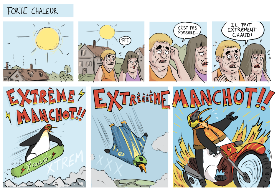 extreme_manchot.png